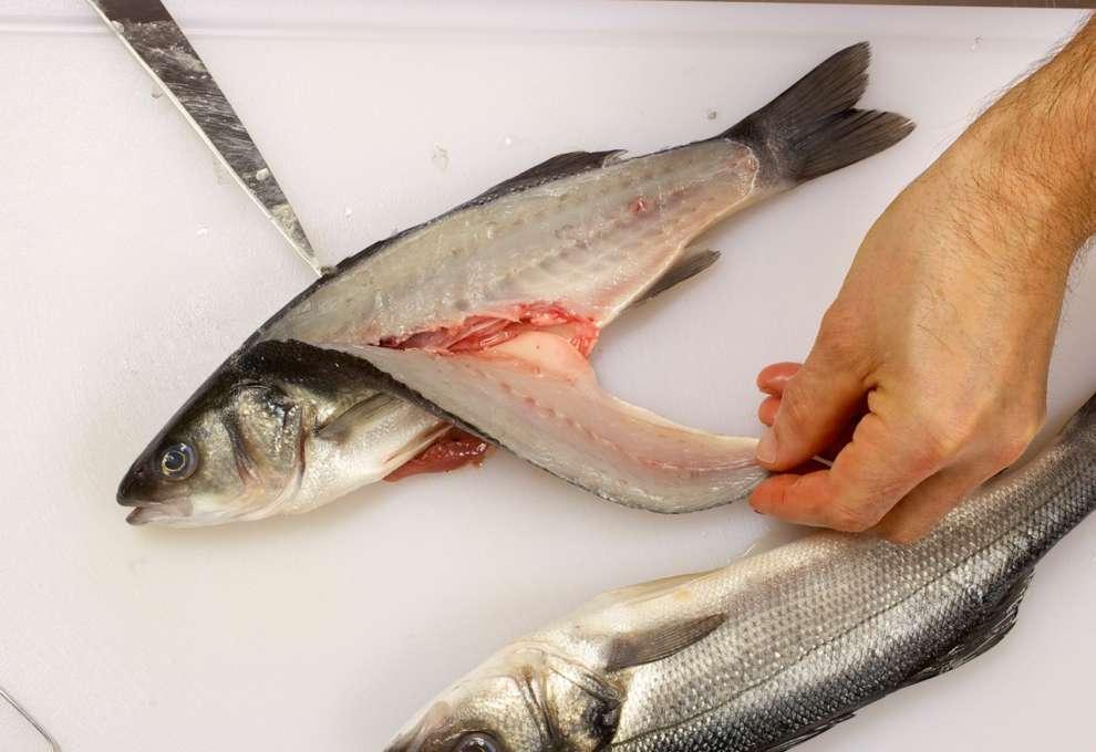 Wie filetiert man einen fisch