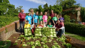 Die SchülerInnen der NMS Ferdinandeum mit den Vertretern des Grazer Krauthäuptels beim Ernten