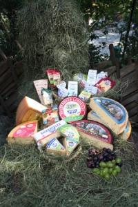 Die Palette der Heumilchprodukte reicht von Trinkmilch über Joghurt, Topfen und Butter bis zu den verschiedensten Käsespezialitäten. (Foto: ARGE Heumilch Österreich)