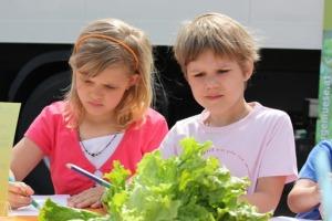 Beim Gewinnspiel wurde fleißig nachgedacht. Schließlich stand ein Tag bei einem Salatbauern für die gesamte Schulklasse auf dem Spiel.