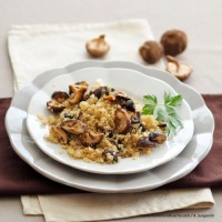 Quinoa-Pilz-G'röstl