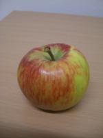 Bei so vielen Sorten ist sicher für jeden Geschmack der passende Apfel dabei!