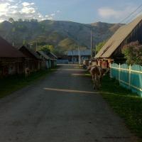 Typische Dorfstraße in Baschkortostan